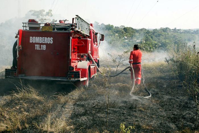 Bomberos apagan incendio forestal.