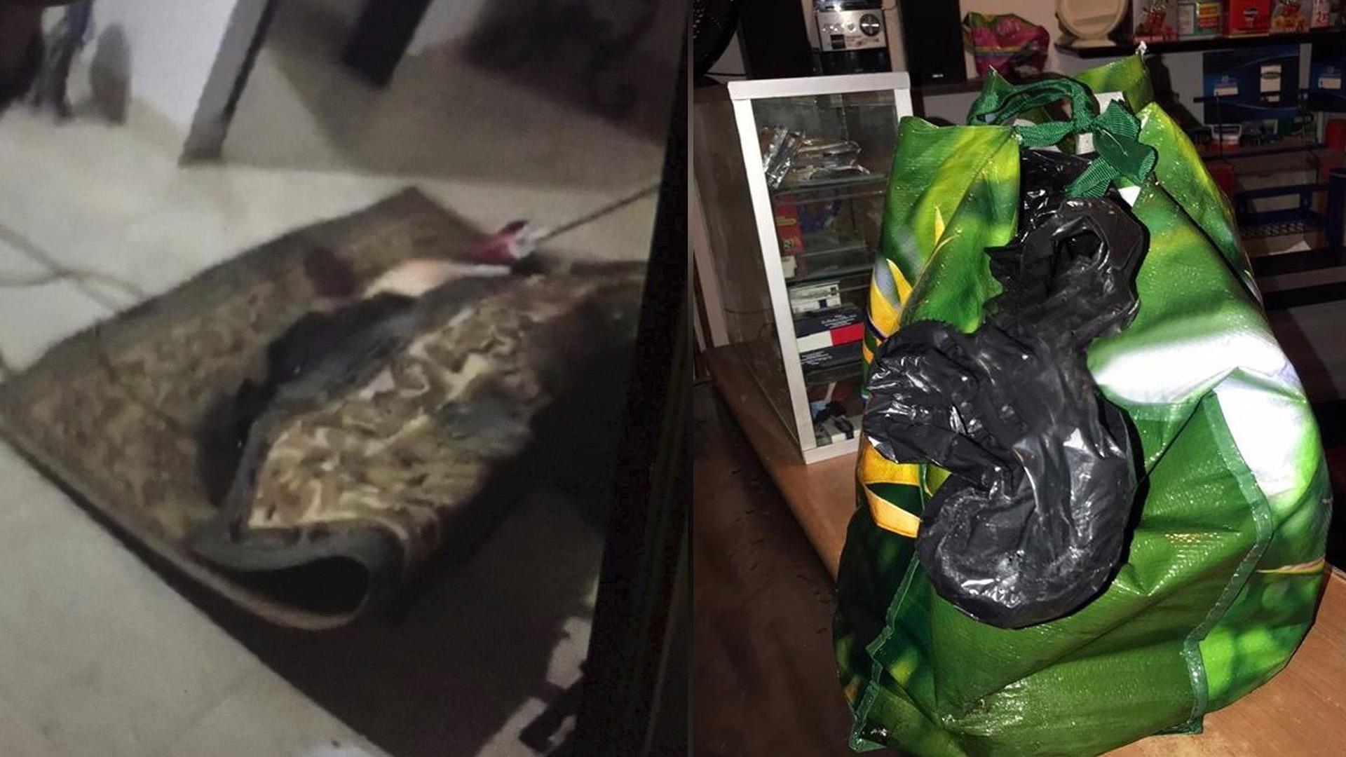 Envuelto en una alfombra fue encontrado el torso de Aracelis Amador de García. Extremidades de la mujer dentro de la bolsa.
