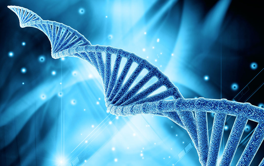 Con técnica experimental modifican por primera vez el ADN ...