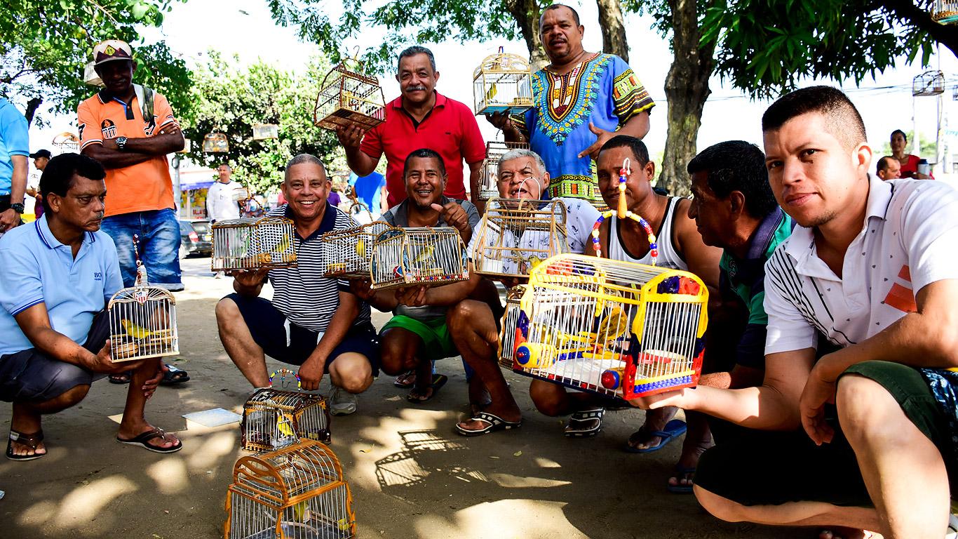 Miembros de Asocoacol, asociación que está integrada por 244 canaricultores y 909 aves, en el barrio Simón Bolívar.