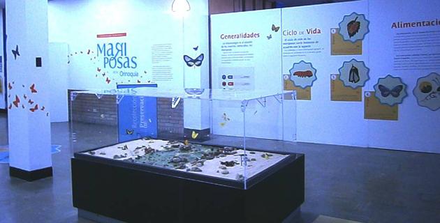 Museo de Ciencias de la Universidad del Bosque