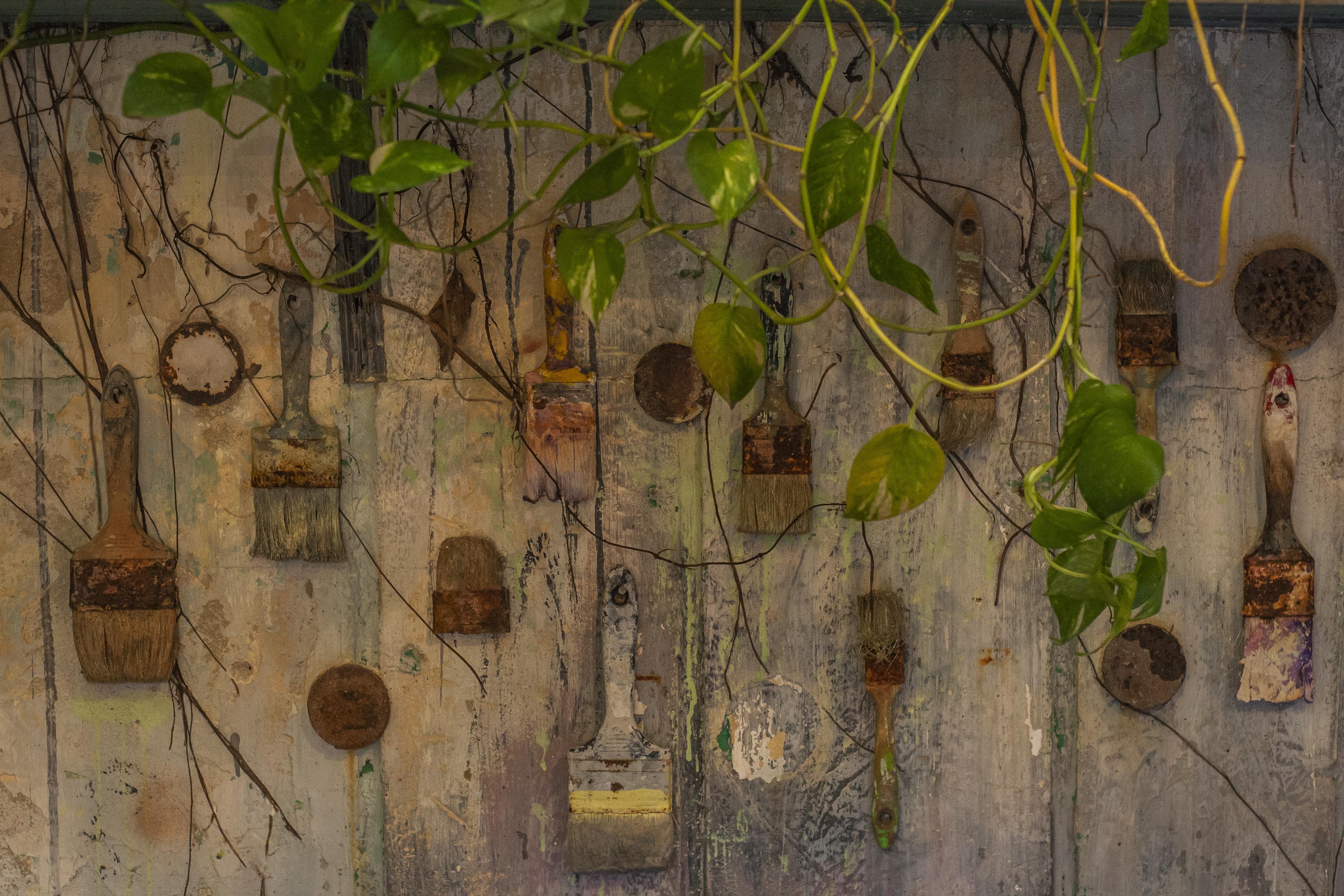Muchas de las brochas de pintura que se usaron fueron colgadas en la pared.