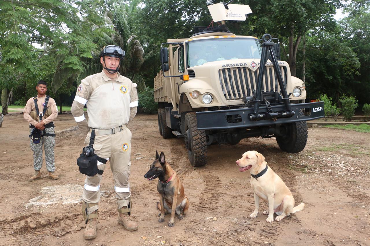 Maquinaria pesada y perros rescatistas.
