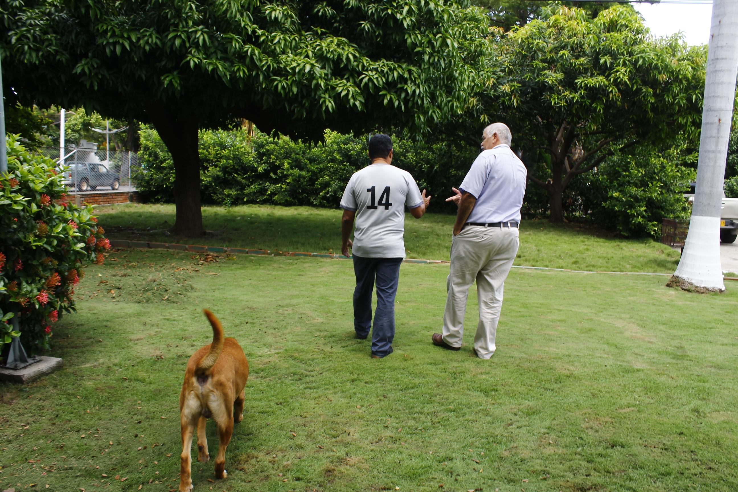 'Paco' el perro labrador del ganadero Lacouture y los palos de mango fueron testigos del encuentro