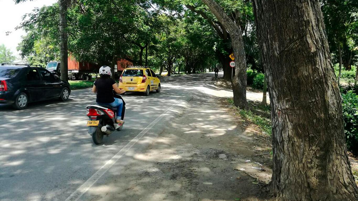 El tramo vial de unos ocho kilómetros aproximadamente, está arborizado desde hace unos 40 años, a lado y lado de la vía y en el separador.