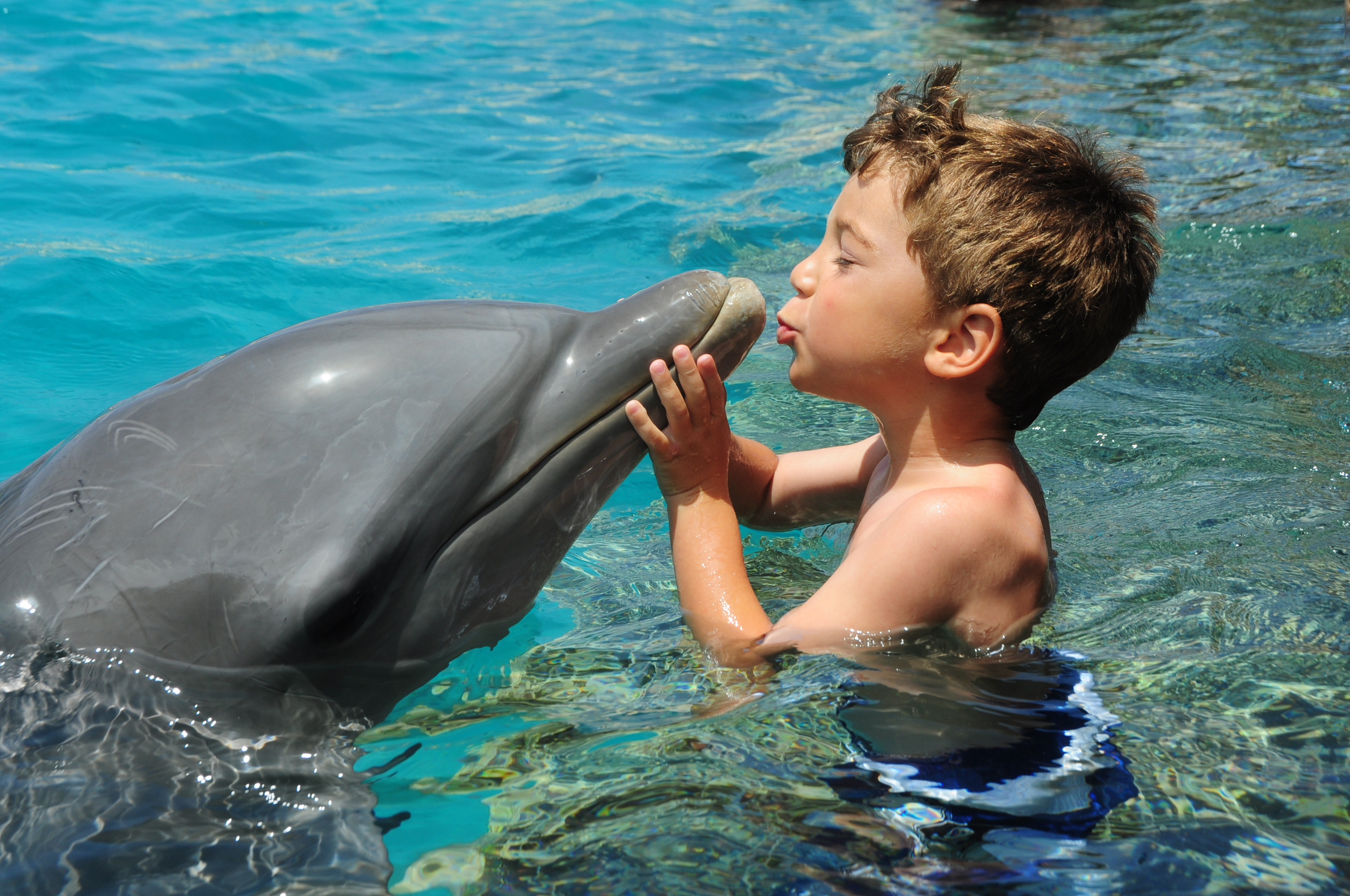 Nadar con tiburones es una de las actividades preferidas por los niños.