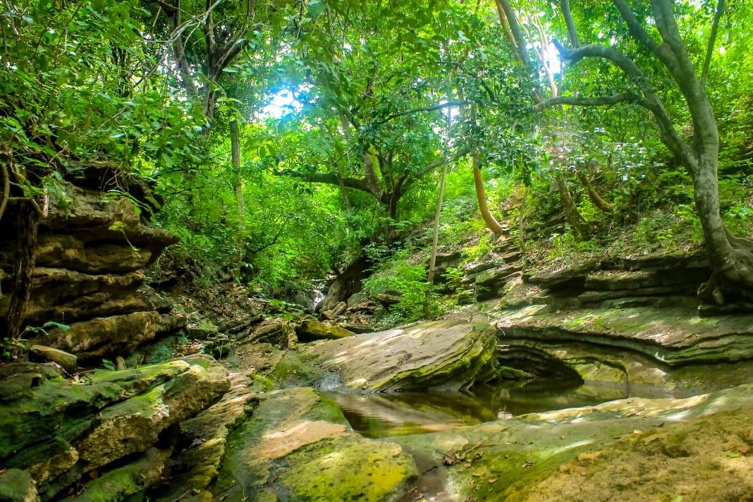 Sendero rocoso en Piedra Pintada, Tubará.