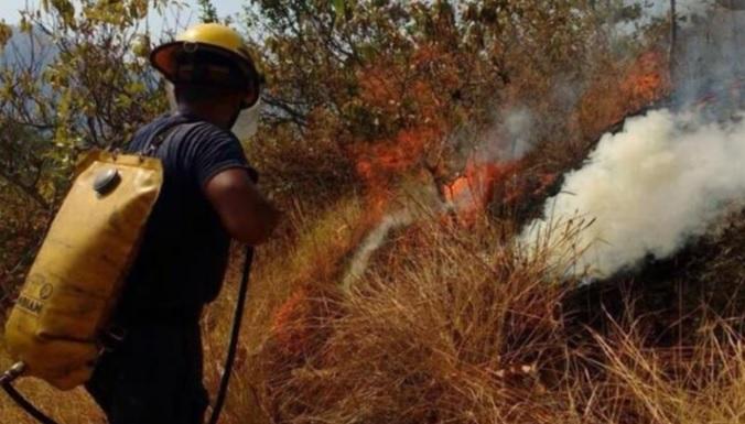 El Cuerpo de Bomberos de Santa Marta reportó que hasta ayer se han registrado 70 incendios forestales.