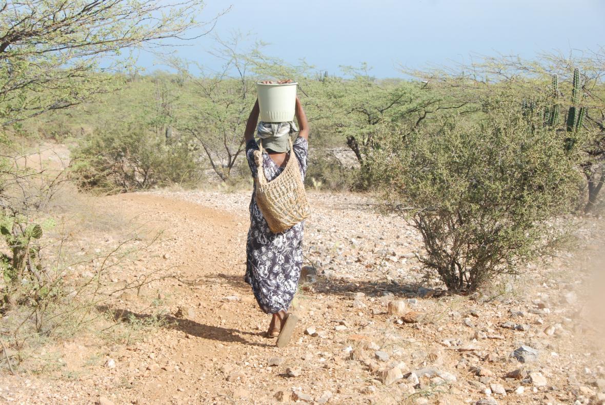Una indígena transporta un balde y botellas con agua en la Alta Guajira después de caminar dos kilómetros.