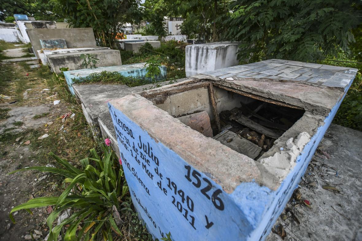 La maleza se apoderó de la mayoría de las tumbas.