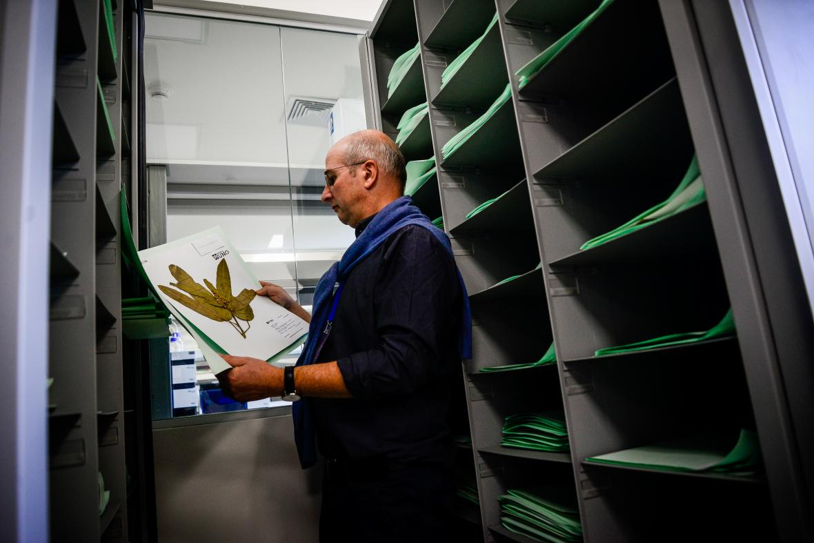 Thonas Borsch, director del Jardín Botánico de Berlín, apoya el desarrollo del nuevo herbario en la ciudad.