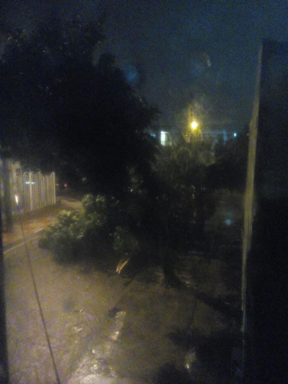 Árbol caído en el barrio El Silencio.