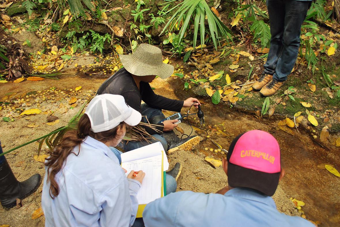 Grupo de Investigación en Ecología Neotropical, Gien.