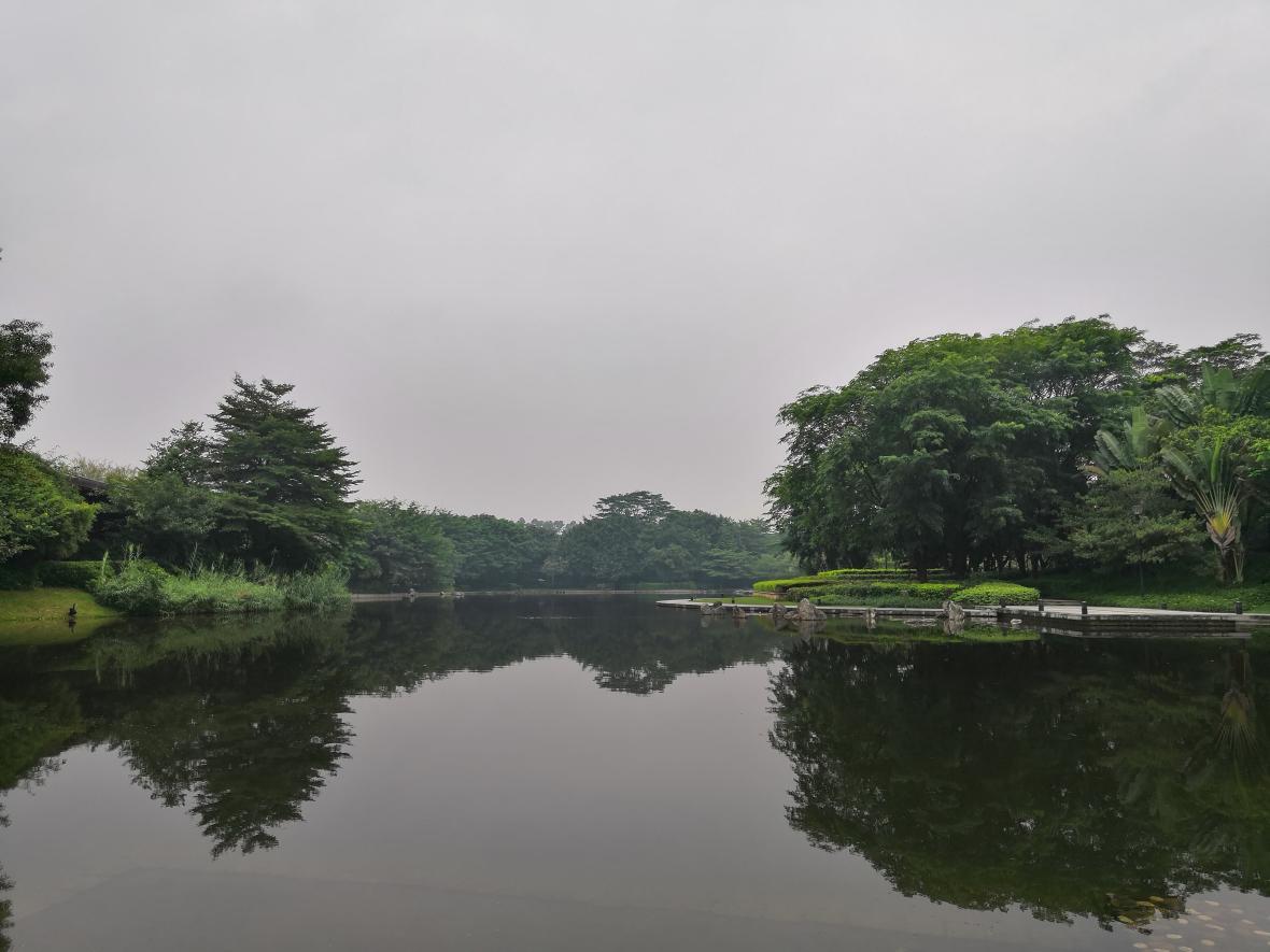Lago ubicado en Longgang, distrito perteneciente a Shenzhen, en China.
