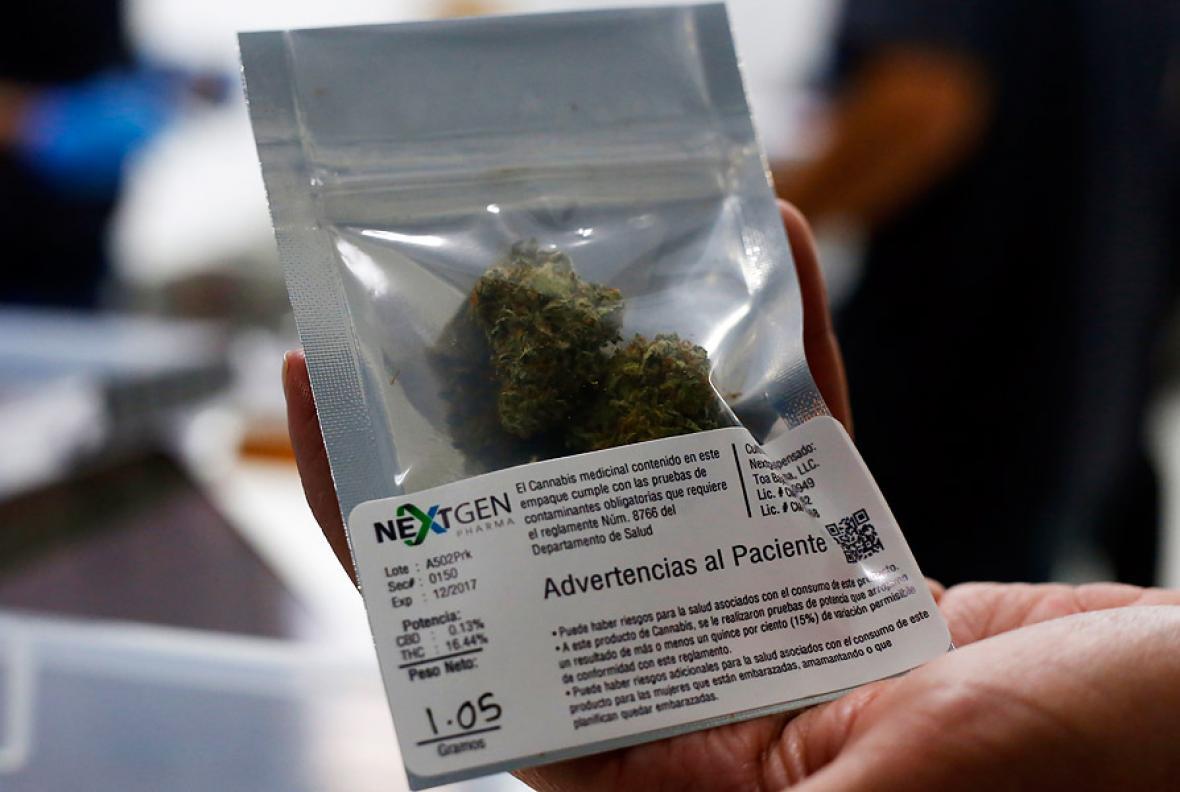 En Puerto Rico rige el consumo de marihuana con fines medicinales. La medida empezó a regir desde el viernes pasado.