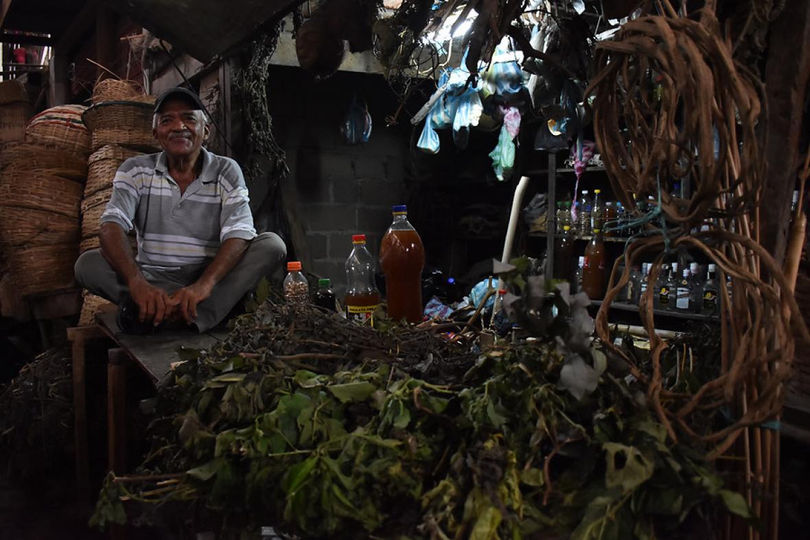 Leandro Zabaraín Jr. junto a su centenaria colmena de plantas medicinales.