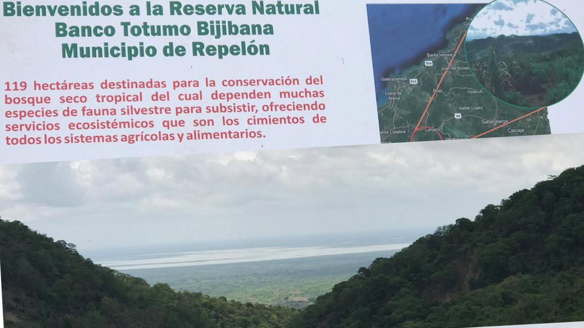 Esta es la reserva natural Bijibana en Repelón.