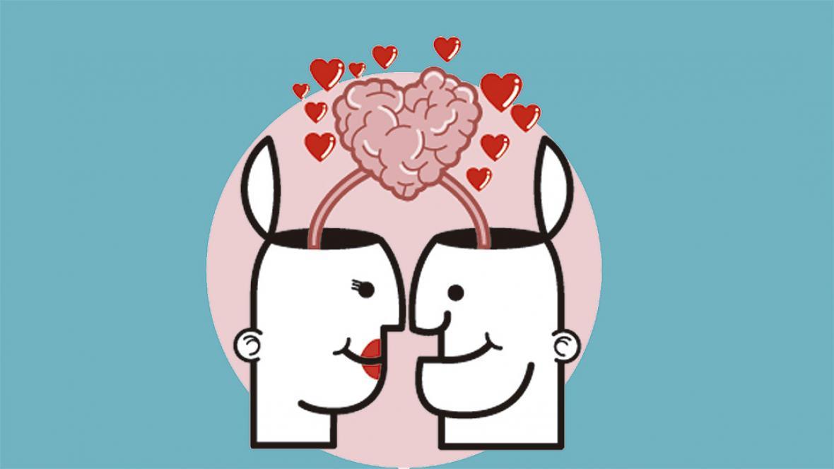 Cómo funciona el cerebro de los enamorados? | El Heraldo
