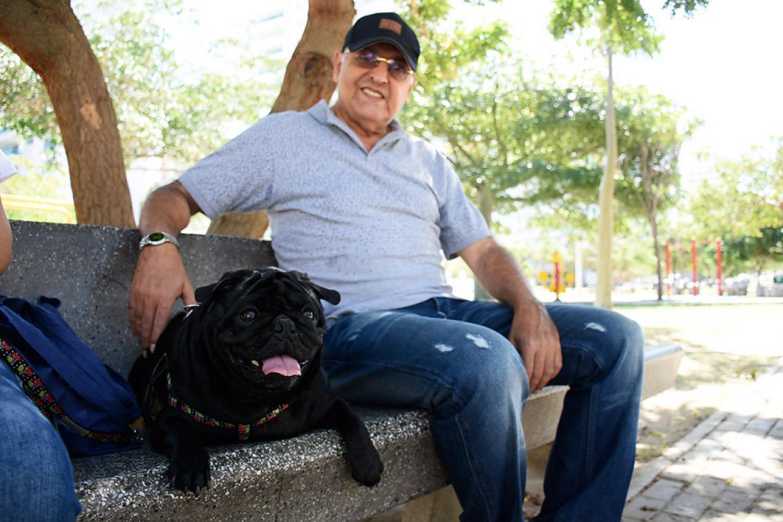 Mela, una canina de raza pug, tiene cuatro años y es la compañera fiel de Jorge Manco y su esposa.
