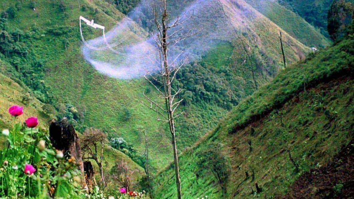 Vista aérea de fumigación con glifosato para la erradicación de cultivos ilícitos.