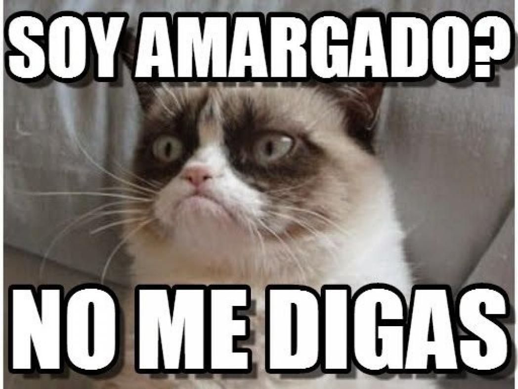Estos Son Algunos Memes De Grumpy Cat La Gata Famosa De