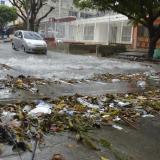 El Editorial | Basuras, ni a las calles ni a los arroyos