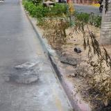 E la carrera 8 con calle 42 del barrio La Alboraya fue incendiada la motocicleta.
