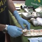 Detenidos 15 colombianos por tráfico de drogas en España