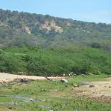 Acusan a Ejército venezolano por muerte de indígena wayuu