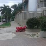 Vecinos alertan por mal manejo de residuos