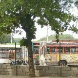 Chiva rumbera accidentada no podía transitar por Taganga