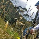 Presidente delimita ocho páramos que abarcan 100 mil hectáreas en ocho departamentos