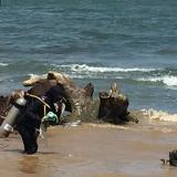 Buzos buscan basura en la desembocadora del río Manzanares.