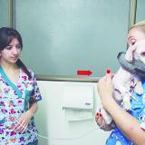 Luna fue internada en una clínica veterinaria. En la foto la doctora Lorena Mora (izq.) y la cuidadora de perros, Martha Ramírez junto a el animal.