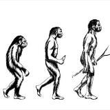 Descubren un nuevo ancestro humano