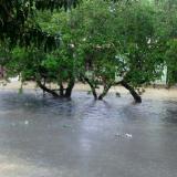 Emergencia en varios barrios de Cartagena por fuertes lluvias