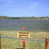 CRA cifra ahora en 5.000 los peces muertos en el Cisne