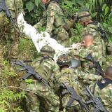 Muere soldado por ataque de abejas africanizadas en el Cesar