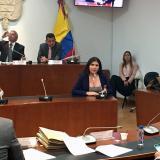 Lorena Beltrán durante la aprobación en primer debate en la Cámara de Representantes.