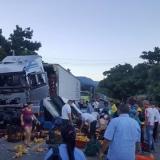 En video | Saquean camión de pollos que se accidentó en la Zona Bananera