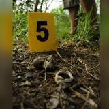 Cinco años después, asesinato de Angie Paola sigue impune