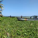 Guardacostas de la Armada Nacional ayudaron a trasladar el cuerpo hallado hasta una orilla.