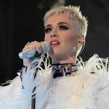 Katy Perry golpea a fan durante un concierto