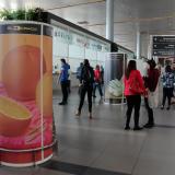 El aeropuerto El Dorado ahora es también una galería de arte