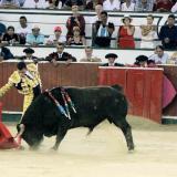 Londoño asegura que Cartagena no tendrá corridas de toros mientras él sea el alcalde