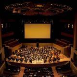 La Filarmónica Joven de Colombia vendrá a prepararse en Barranquilla