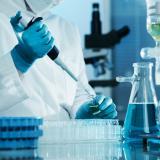 Científicos cultivan óvulos humanos para preservar la fertilidad femenina