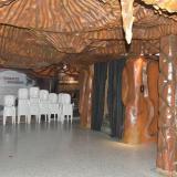 El museo de Bellas Artes fue cerrado tras colapso del salón Pedro Biava