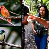 Juan David Camacho en pleno proceso de observador de aves.