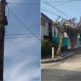 Postes en mal estado preocupan a vecinos en El Universal y El Silencio